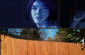Cortana Privacy Fence.jpg
