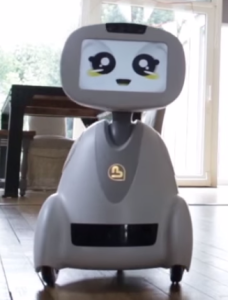 Buddy Companion Robot